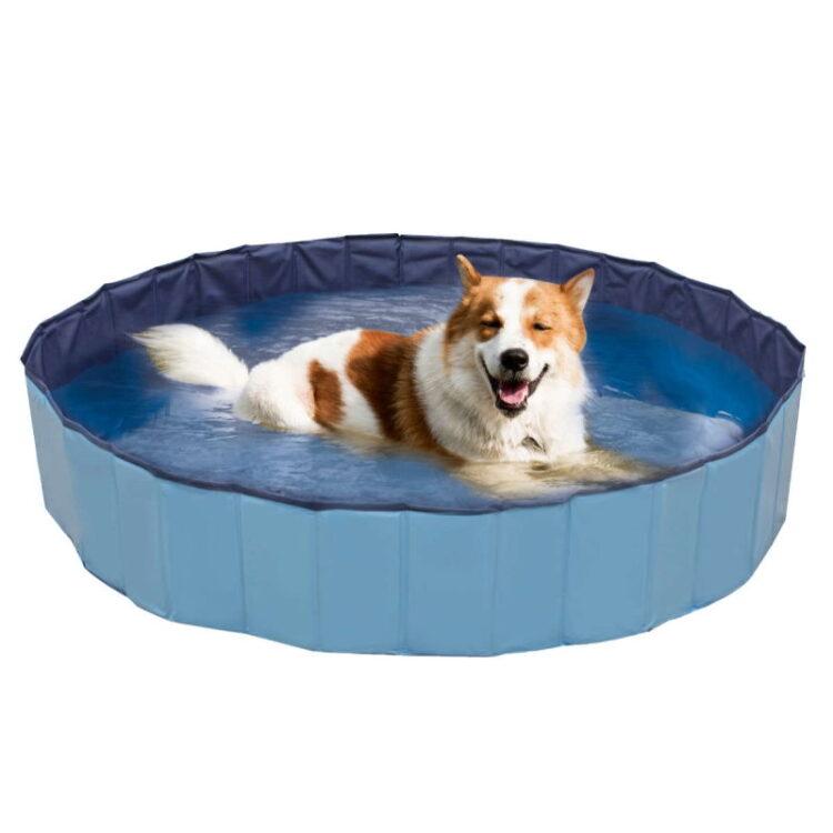 DOG SWIMMING POOL EXPLORER 160x30 cm