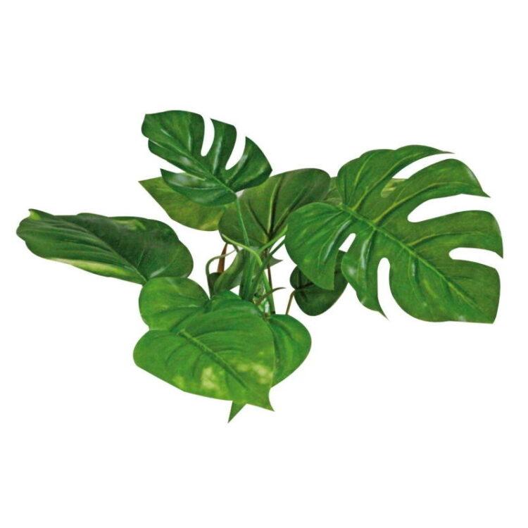 PLANT REPLICA ANUBIAS 15 CM