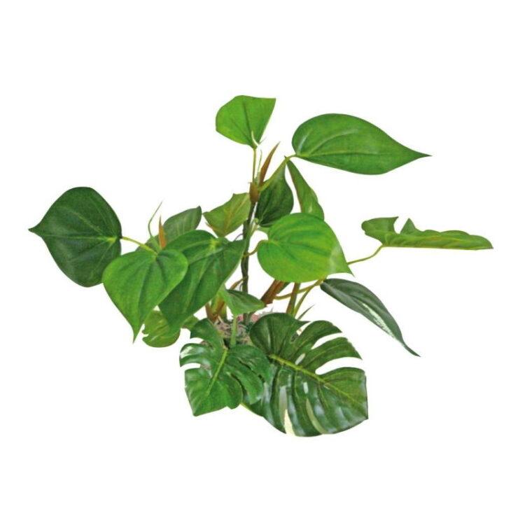 PLANT REPLICA ANUBIAS 20 CM