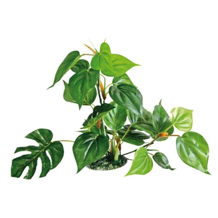 PLANT REPLICA ANUBIAS 30 CM