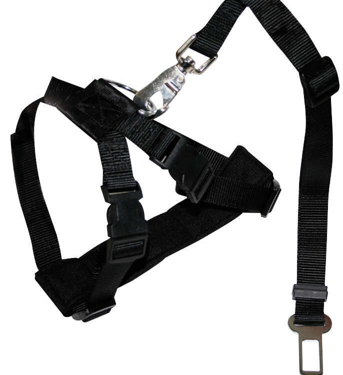 HARNESS FOR CAR SAFETY BELT SMALL