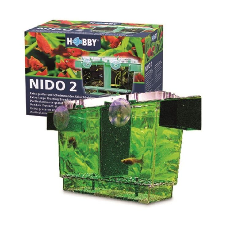 ΓΕΝΝΗΣΤΡΑ-NIDO II