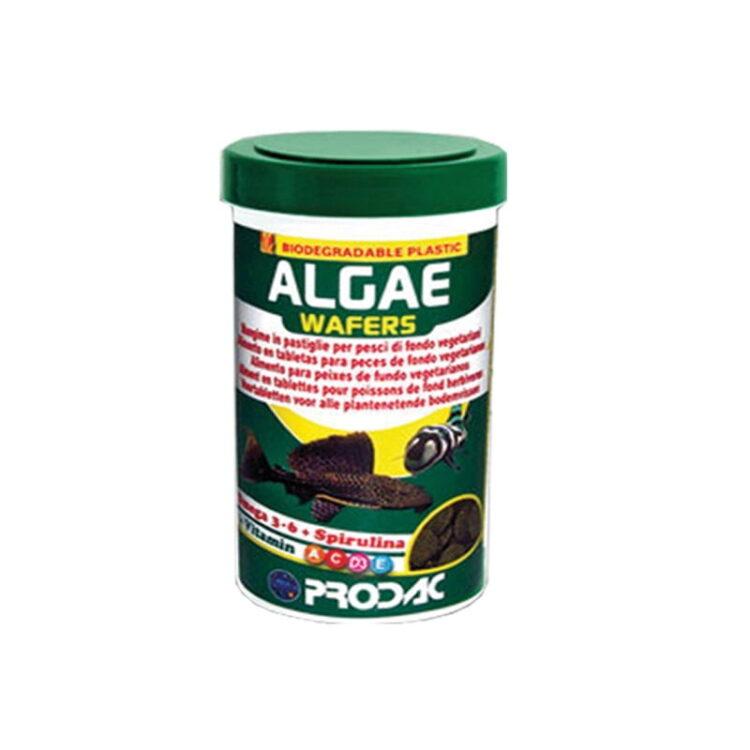 ALGAE WAFER 100ML 50gr