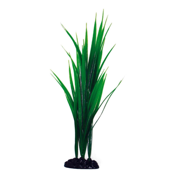 PLANT CLASSIC BAMBOO SM