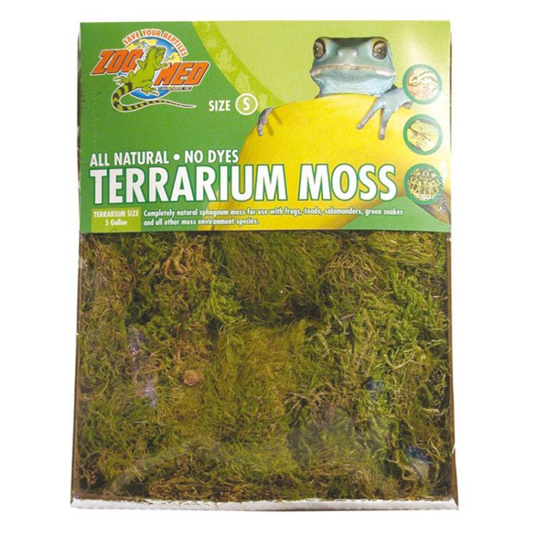 TERRARIUM MOSS MD