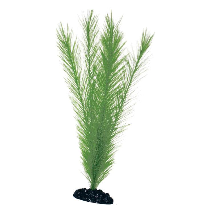 PLANT CLASSIC BLYXA MD .*