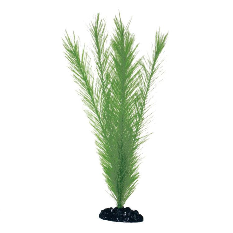 PLANT CLASSIC BLYXA LG *